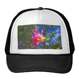 flor rosada del árbol de orquídea contra las hojas