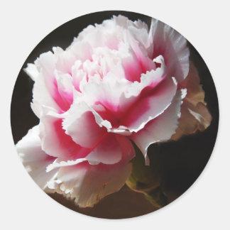 Flor rosada del clavel del clavel pegatina redonda