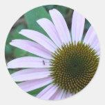 Flor rosada del cono de la hormiga de la flor del pegatina redonda