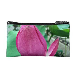 Flor rosada del deslumbramiento Lotus
