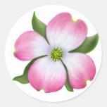 Flor rosada del Dogwood Pegatina Redonda