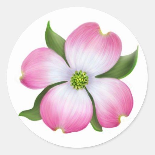Flor rosada del Dogwood Pegatinas