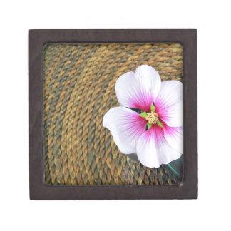 Flor rosada del hibisco caja de recuerdo de calidad