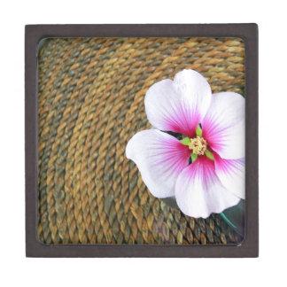 Flor rosada del hibisco caja de regalo de calidad