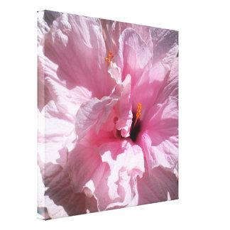 Flor rosada del hibisco impresión en lienzo