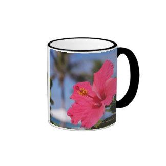 Flor rosada del hibisco taza a dos colores