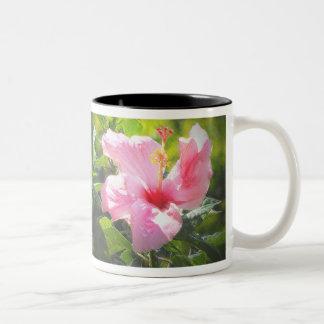 Flor rosada del hibisco taza dos tonos