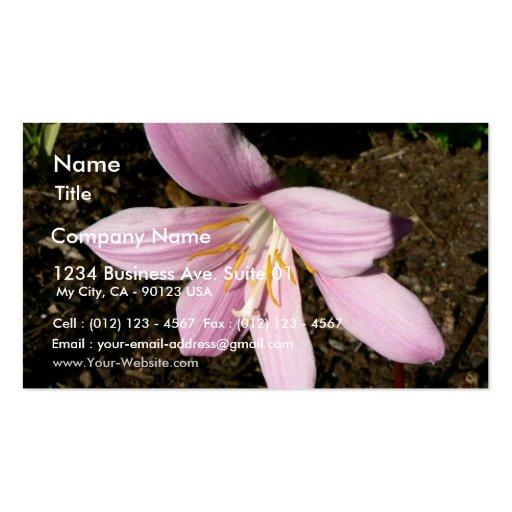 Flor rosada del jardín tarjeta de visita