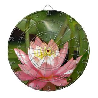 Flor rosada del lirio de agua del loto