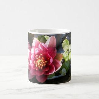 Flor rosada del lirio de agua taza básica blanca