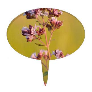 Flor rosada del orégano decoraciones de tartas