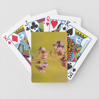 Flor rosada del orégano cartas de juego