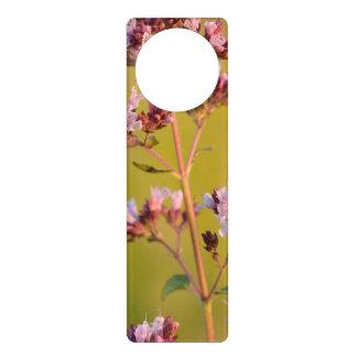 Flor rosada del orégano colgantes para puertas
