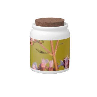 Flor rosada del orégano plato para caramelo
