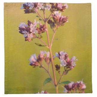 Flor rosada del orégano servilletas de papel