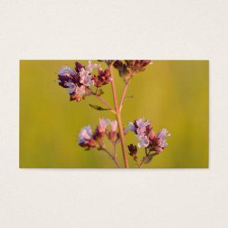 Flor rosada del orégano tarjetas de visita