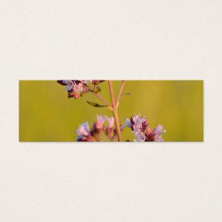Flor rosada del orégano tarjetas de visita mini