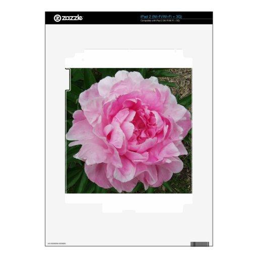 Flor rosada del Peony Skins Para eliPad 2
