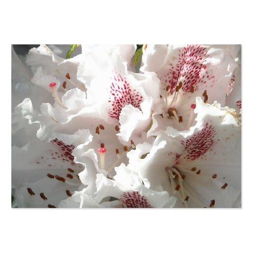 Flor rosada del rododendro en el cedro Closup Plantillas De Tarjetas Personales