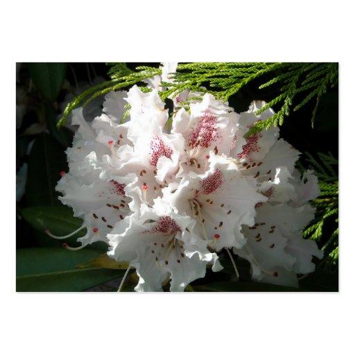 Flor rosada del rododendro en el negro 2 del contr plantilla de tarjeta de visita