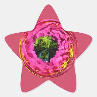 Flor rosada en el globo cristalino colcomanias forma de estrellaes personalizadas