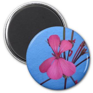 Flor rosada en el imán azul de la cocina del fondo