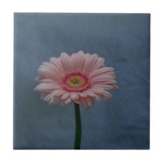 flor rosada en fondo azul azulejo cuadrado pequeño