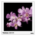 Flor rosada en negro - orquídeas de la orquídea de