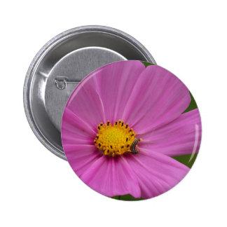 Flor rosada en una tarjeta o un regalo