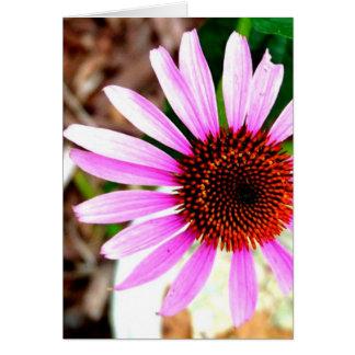 Flor rosada felicitación