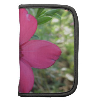 flor rosada organizador