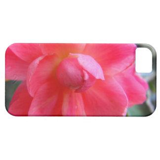 flor rosada hermosa de la begonia iPhone 5 carcasa