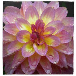 Flor rosada hermosa de la dalia con las gotas de servilleta