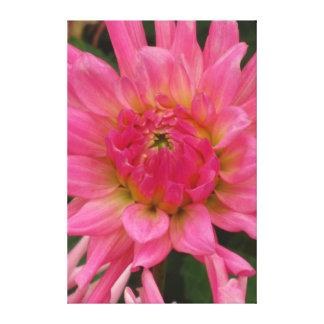 Flor rosada hermosa impresión en lienzo