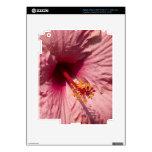 Flor rosada macra del hibisco iPad 3 skin