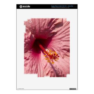 Flor rosada macra del hibisco iPad 3 skins