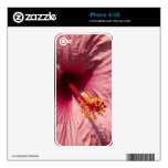Flor rosada macra del hibisco skins para iPhone 4