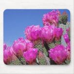 Flor rosada Mousepad del cactus Tapetes De Raton