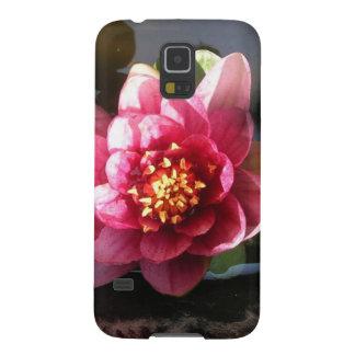 Flor rosada oscura Sunlit del lirio de agua Funda Para Galaxy S5