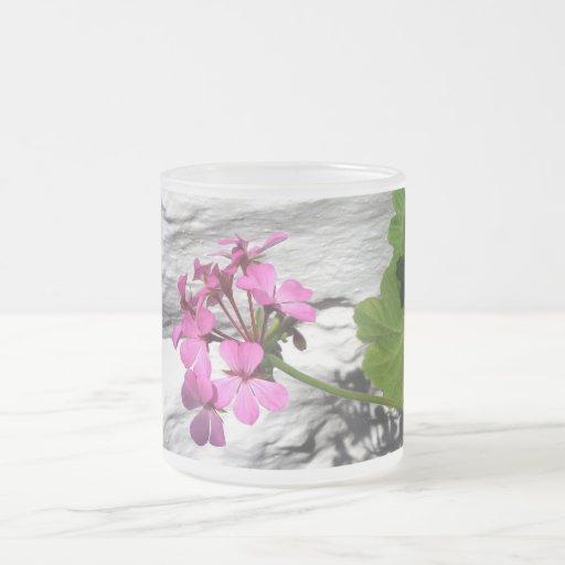 flor rosada, pared blanca taza cristal mate