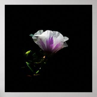 Flor rosada póster