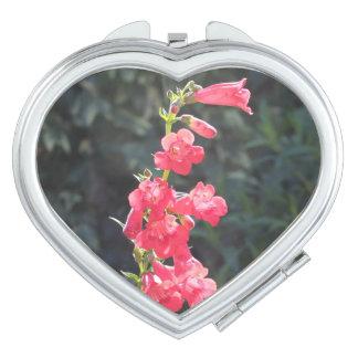 Flor rosada Sunlit del Penstemon Espejos Maquillaje