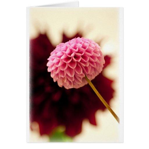 Flor rosada tarjeta de felicitación