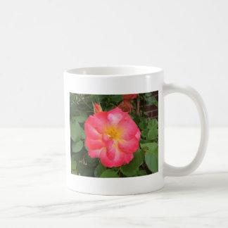 Flor rosada taza de café