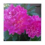 Flor rosada tejas  ceramicas