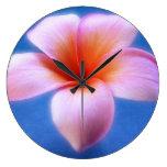 Flor rosada y azul de Hawaii del Frangipani del Pl Relojes