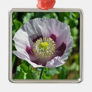 Flor rosada y púrpura de la amapola adorno navideño cuadrado de metal
