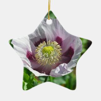 Flor rosada y púrpura de la amapola adorno navideño de cerámica en forma de estrella
