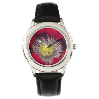 Flor rosada y púrpura macra de la amapola reloj