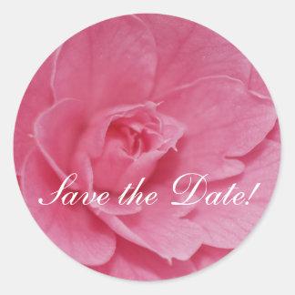 Flor rosado de la camelia pegatinas redondas